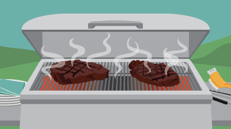 Steak Cuts Grilling Guide