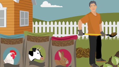 Using Animal Waste as Garden Fertilzer