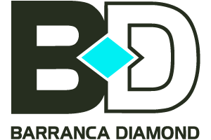 See All Barranca Diamond Concrete Saw Parts & Repair Help | Fix.com Parts