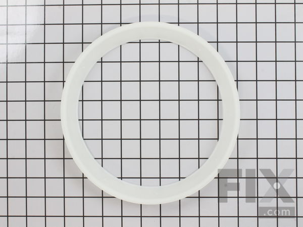 WP21002026 Snubber Ring